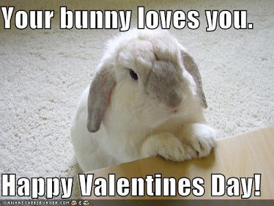 the receding hare line | bunnies! bunnies! more bunnies!, Ideas